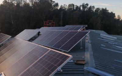 Instalación Fotovoltaica en la empresa PIENSOS MAQUEDA S.L. en Sevilla